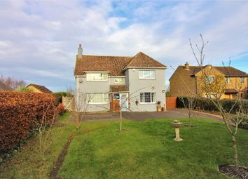 Thumbnail 3 bed detached house for sale in Compton Road, South Petherton