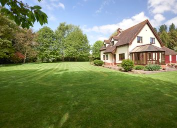 Thumbnail 3 bed detached house for sale in Mill Lane, Weybread, Diss
