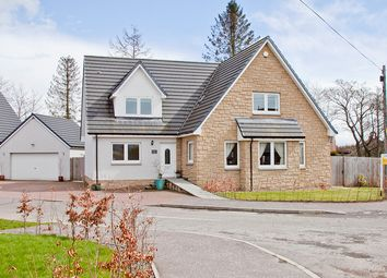 Thumbnail 5 bed detached house to rent in 1 Smiddy Haugh, Memus, Forfar