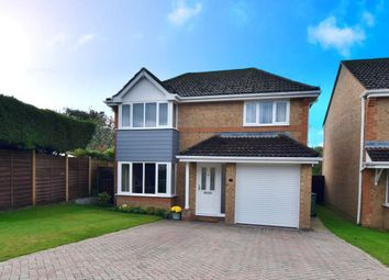 Thumbnail 4 bed detached house for sale in Pipit Close, Waterlooville