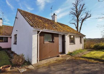 Thumbnail Detached house to rent in Hepburn Gardens, St Andrews, Fife