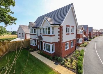 Thumbnail 3 bed detached house for sale in Shareford Way, Cranbrook, Exeter