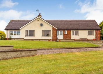 Thumbnail 5 bed detached house for sale in Tullaghgore Road, Ballymoney, County Antrim