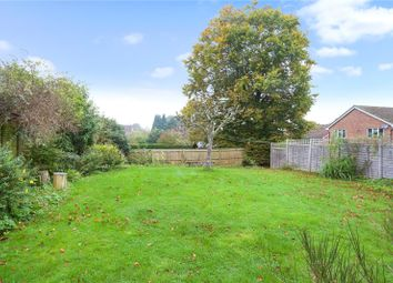Thumbnail 2 bed detached bungalow for sale in Hawkshaw Close, Liphook, Hampshire