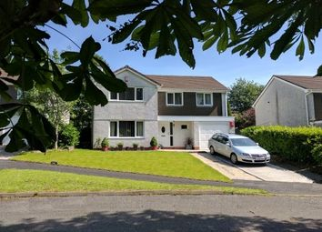 Thumbnail 4 bed property to rent in Rivers Close, Ivybridge