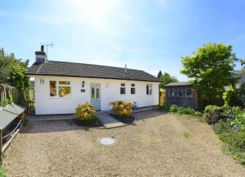 Thumbnail 2 bed detached bungalow for sale in West Street, Bere Regis BH20.