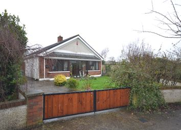 Thumbnail 3 bed detached house for sale in 161 Rockfield Walk, Maynooth, Kildare