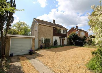 Thumbnail 3 bed detached house for sale in Church Road, Swainsthorpe, Norwich