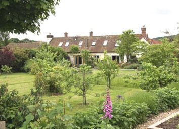 Thumbnail 4 bed barn conversion for sale in Elsted, Midhurst, West Sussex, .