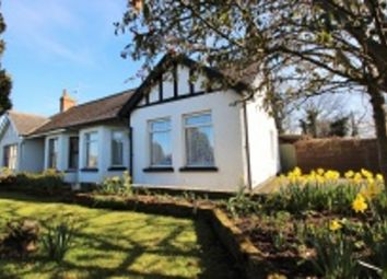Thumbnail 4 bed semi-detached house for sale in Lisburn Road, Moira