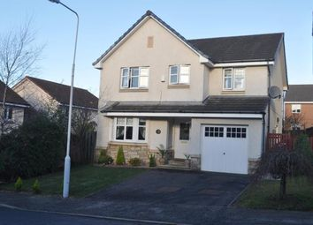 Thumbnail 4 bed detached house to rent in Dover Drive, Dunfermline