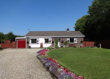 Thumbnail 3 bed bungalow for sale in Derril, Pyworthy, Holsworthy