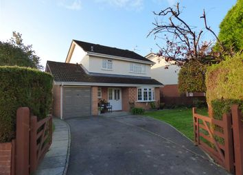 Thumbnail 3 bed detached house for sale in Wyelands View, Mathern, Chepstow