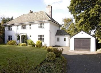Thumbnail 4 bed detached house to rent in Tavistock Rd, Plymouth, Devon