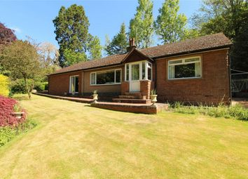 Thumbnail 3 bedroom detached bungalow for sale in Bongate, Appleby-In-Westmorland