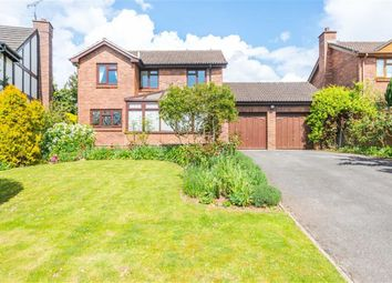 Thumbnail 4 bed detached house for sale in Orchid Meadow, Chepstow, Monmouthshire