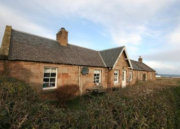 Thumbnail 4 bed semi-detached house to rent in Crowhill Cottages, Dunbar, East Lothian
