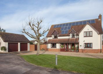 Thumbnail 4 bed detached house for sale in Rows Meadow, Hempnall, Norwich