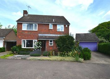 Thumbnail 4 bed detached house to rent in Norton Green, Stevenage