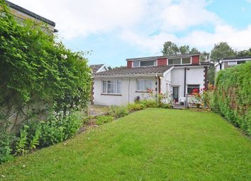 Thumbnail 4 bed detached house for sale in Tregwilym Road, Rogerstone, Newport