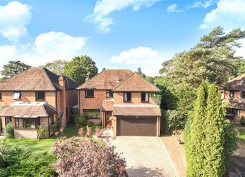 Thumbnail 4 bed detached house to rent in Alderley Close, Woodley, Reading, Berkshire