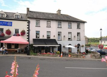 Thumbnail Property for sale in Main Street, Inistioge, Kilkenny