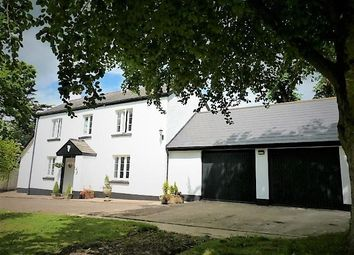 Thumbnail 4 bedroom detached house for sale in North Tawton
