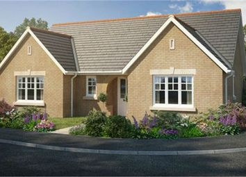 Thumbnail 3 bed detached bungalow for sale in Rowan Close, Haddenham, Ely