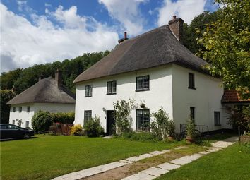 Thumbnail 3 bedroom semi-detached house for sale in The Street, Milton Abbas, Dorset