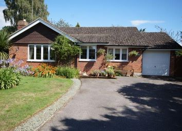 Thumbnail 3 bed detached bungalow for sale in Ludshott Grove, Headley Down