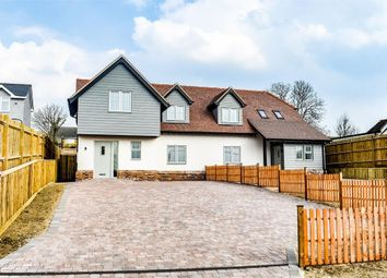 Thumbnail 4 bed semi-detached house for sale in The Downs, Stebbing, Dunmow