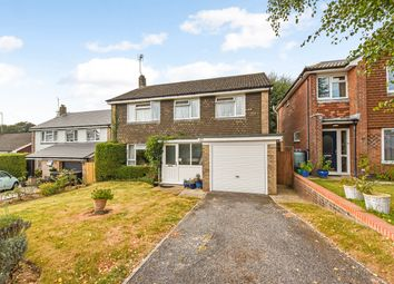 Thumbnail 4 bed detached house for sale in Stafford Road, Petersfield
