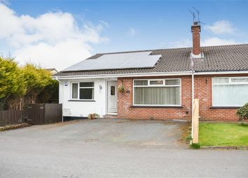 Thumbnail 4 bed semi-detached bungalow for sale in Causeway End Road, Lisburn, County Antrim