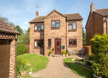 Thumbnail 4 bed detached house for sale in The Hollies, Osgodby, Selby