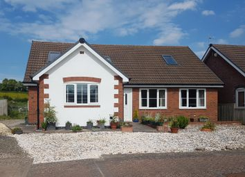 Thumbnail 3 bedroom detached house for sale in 12 Hawthorn Rise, Peterchurch, Hereford