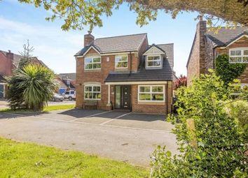 Thumbnail 4 bed property to rent in Pintail Close, Leyland