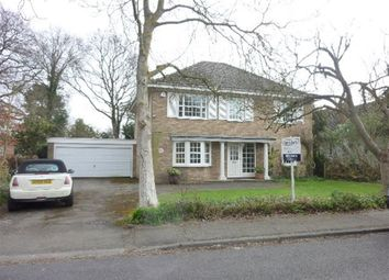 Thumbnail 4 bed property to rent in Northcote Road, West Horsley, Leatherhead
