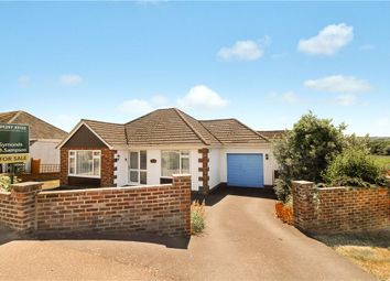 Thumbnail 2 bed bungalow for sale in Abbey Close, Axminster, Devon