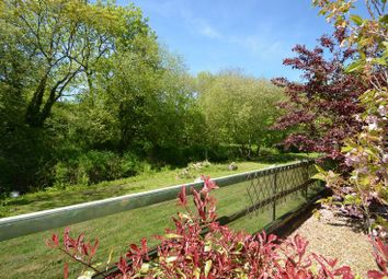 Thumbnail 3 bed detached bungalow for sale in Upton, Ringstead, Dorchester