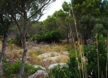 Thumbnail Land for sale in Spain, Mallorca, Valldemossa