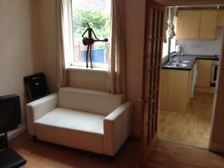 Thumbnail 4 bed flat to rent in Salisbury Road, Sheffield