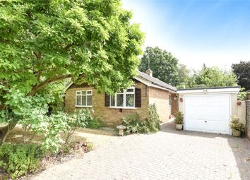 Thumbnail 3 bed detached bungalow for sale in Emmbrook Road, Wokingham, Berkshire