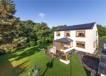 Thumbnail Detached house for sale in Bowland Fell Park, Tosside, Skipton