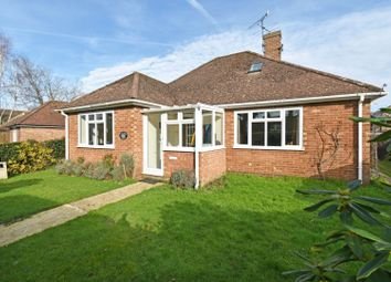 4 bed detached bungalow for sale in Catteshall Hatch, Catteshall Road, Godalming GU7