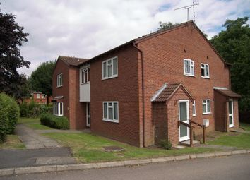Thumbnail Studio to rent in Black Prince Avenue, Cheylesmore, Coventry
