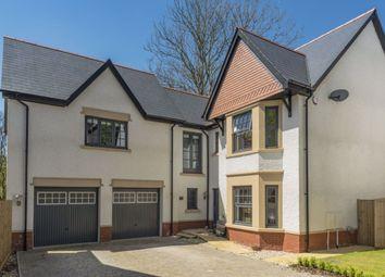 Thumbnail 5 bed property to rent in Ynysnewydd Road, Derwen Fawr, Sketty, Swansea