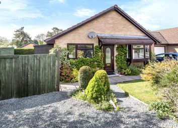 Thumbnail 2 bedroom bungalow for sale in Newbridge-On-Wye, Llandrindod Wells