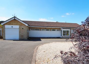 Thumbnail 3 bedroom detached bungalow for sale in Tuttles Lane East, Wymondham