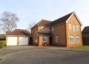 Thumbnail 4 bed detached house for sale in The Greens, Rushmere St. Andrew, Ipswich