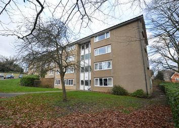 2 bed flat to rent in Tudor Road, St Albans AL3